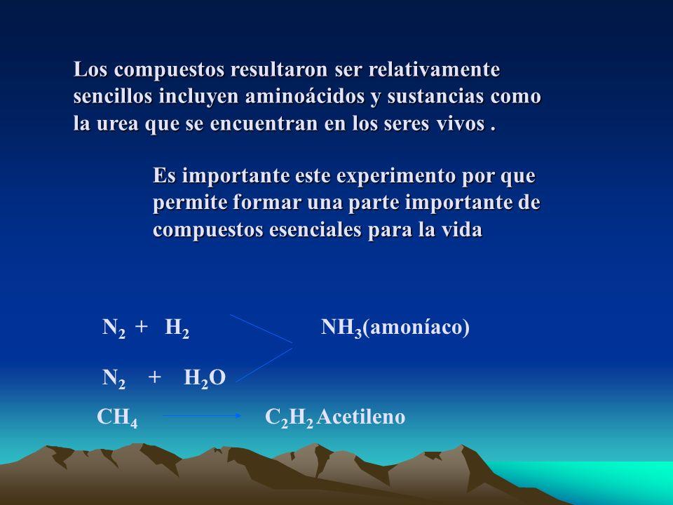 Los compuestos resultaron ser relativamente sencillos incluyen aminoácidos y sustancias como la urea que se encuentran en los seres vivos.