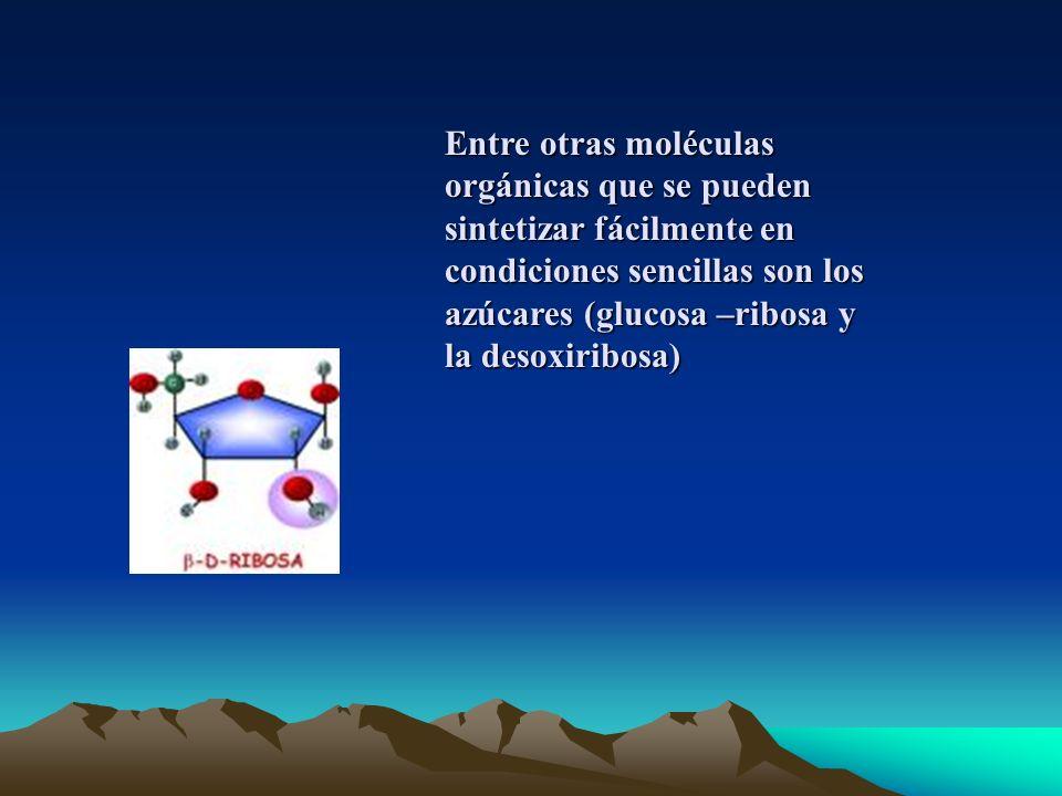 Entre otras moléculas orgánicas que se pueden sintetizar fácilmente en condiciones sencillas son los azúcares (glucosa –ribosa y la desoxiribosa)