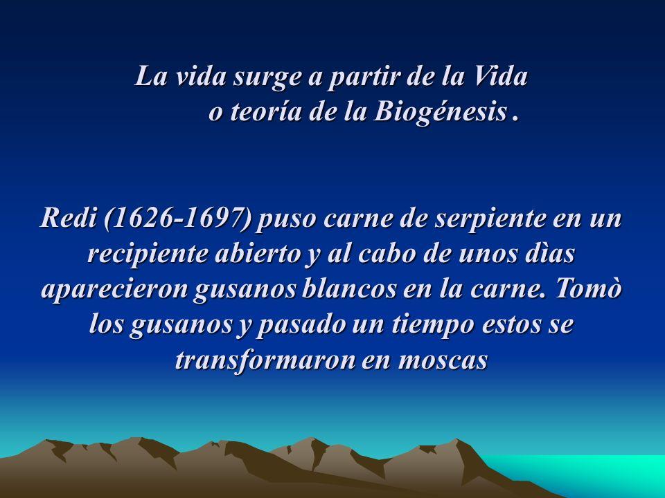 La vida surge a partir de la Vida o teoría de la Biogénesis.