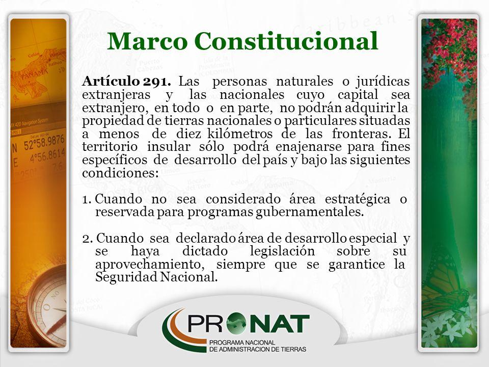 Artículo 291. Las personas naturales o jurídicas extranjeras y las nacionales cuyo capital sea extranjero, en todo o en parte, no podrán adquirir la p