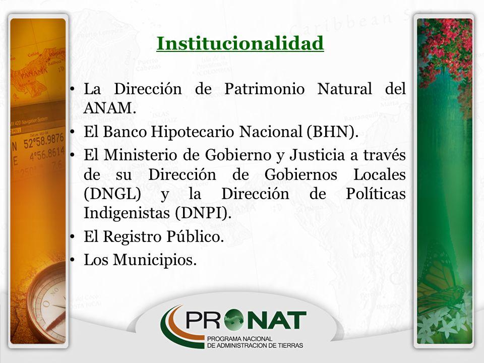 Institucionalidad La Dirección de Patrimonio Natural del ANAM. El Banco Hipotecario Nacional (BHN). El Ministerio de Gobierno y Justicia a través de s