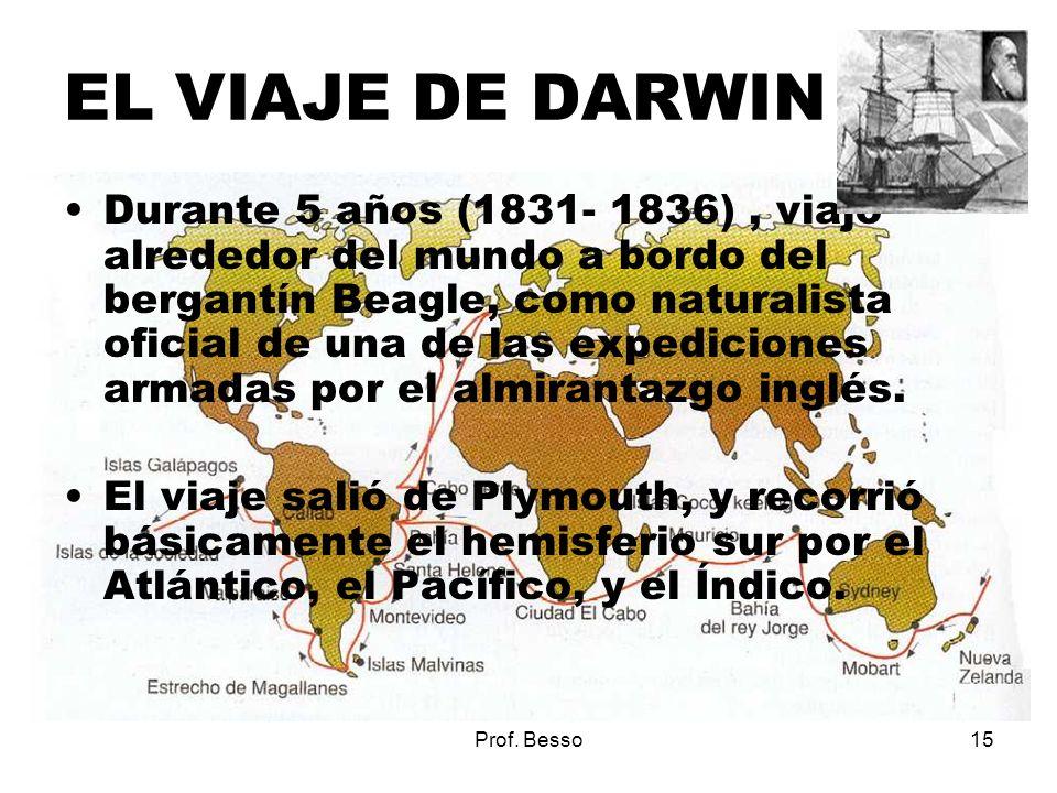 Prof. Besso15 EL VIAJE DE DARWIN Durante 5 años (1831- 1836), viajó alrededor del mundo a bordo del bergantín Beagle, como naturalista oficial de una