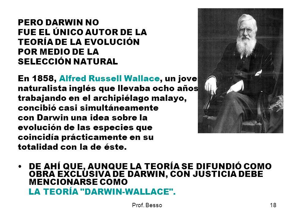Prof. Besso18 PERO DARWIN NO FUE EL ÚNICO AUTOR DE LA TEORÍA DE LA EVOLUCIÓN POR MEDIO DE LA SELECCIÓN NATURAL En 1858, Alfred Russell Wallace, un jov