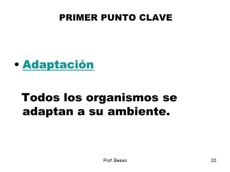 Prof. Besso20 PRIMER PUNTO CLAVE Adaptación Todos los organismos se adaptan a su ambiente.