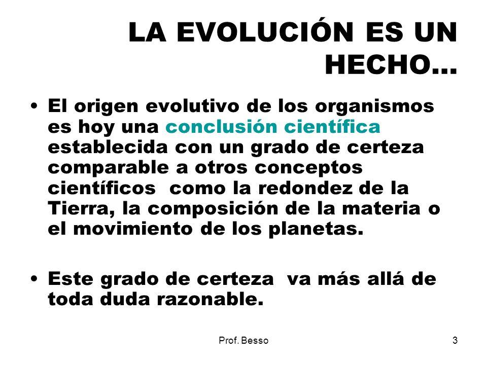 Prof. Besso3 LA EVOLUCIÓN ES UN HECHO… El origen evolutivo de los organismos es hoy una conclusión científica establecida con un grado de certeza comp