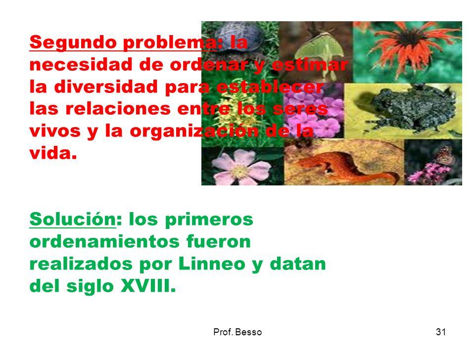 Prof. Besso31 Segundo problema: la necesidad de ordenar y estimar la diversidad para establecer las relaciones entre los seres vivos y la organización