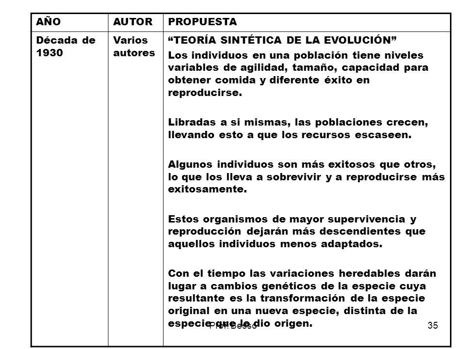 Prof. Besso35 AÑOAUTORPROPUESTA Década de 1930 Varios autores TEORÍA SINTÉTICA DE LA EVOLUCIÓN Los individuos en una población tiene niveles variables