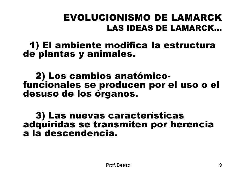 Prof. Besso9 EVOLUCIONISMO DE LAMARCK LAS IDEAS DE LAMARCK… 1) El ambiente modifica la estructura de plantas y animales. 2) Los cambios anatómico- fun