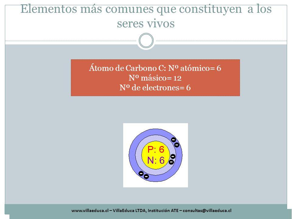 www.villaeduca.cl – VillaEduca LTDA, Institución ATE – consultas@villaeduca.cl Elementos más comunes que constituyen a los seres vivos Átomo de Carbon