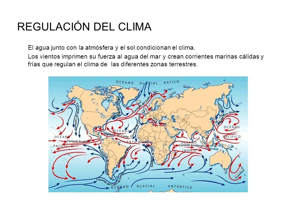 REGULACIÓN DEL CLIMA El agua junto con la atmósfera y el sol condicionan el clima. Los vientos imprimen su fuerza al agua del mar y crean corrientes m