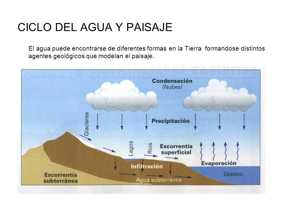 CICLO DEL AGUA Y PAISAJE El agua puede encontrarse de diferentes formas en la Tierra formandose distintos agentes geológicos que modelan el paisaje.