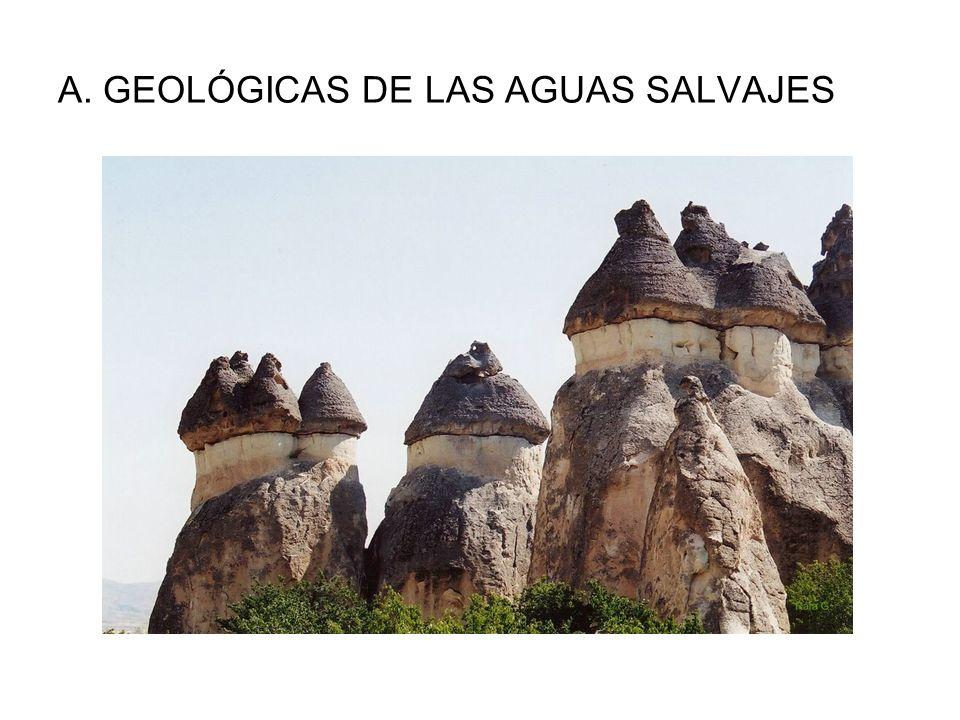 A. GEOLÓGICAS DE LAS AGUAS SALVAJES