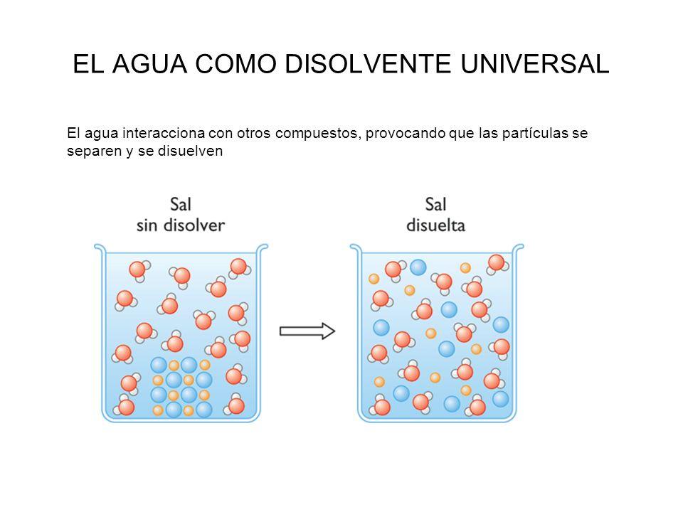 EL AGUA COMO DISOLVENTE UNIVERSAL El agua interacciona con otros compuestos, provocando que las partículas se separen y se disuelven