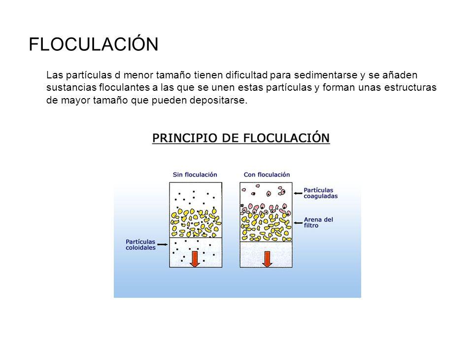 FLOCULACIÓN Las partículas d menor tamaño tienen dificultad para sedimentarse y se añaden sustancias floculantes a las que se unen estas partículas y