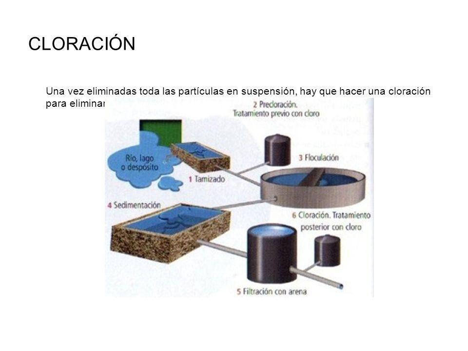 CLORACIÓN Una vez eliminadas toda las partículas en suspensión, hay que hacer una cloración para eliminar los microorganismos