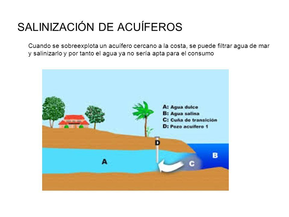 SALINIZACIÓN DE ACUÍFEROS Cuando se sobreexplota un acuífero cercano a la costa, se puede filtrar agua de mar y salinizarlo y por tanto el agua ya no