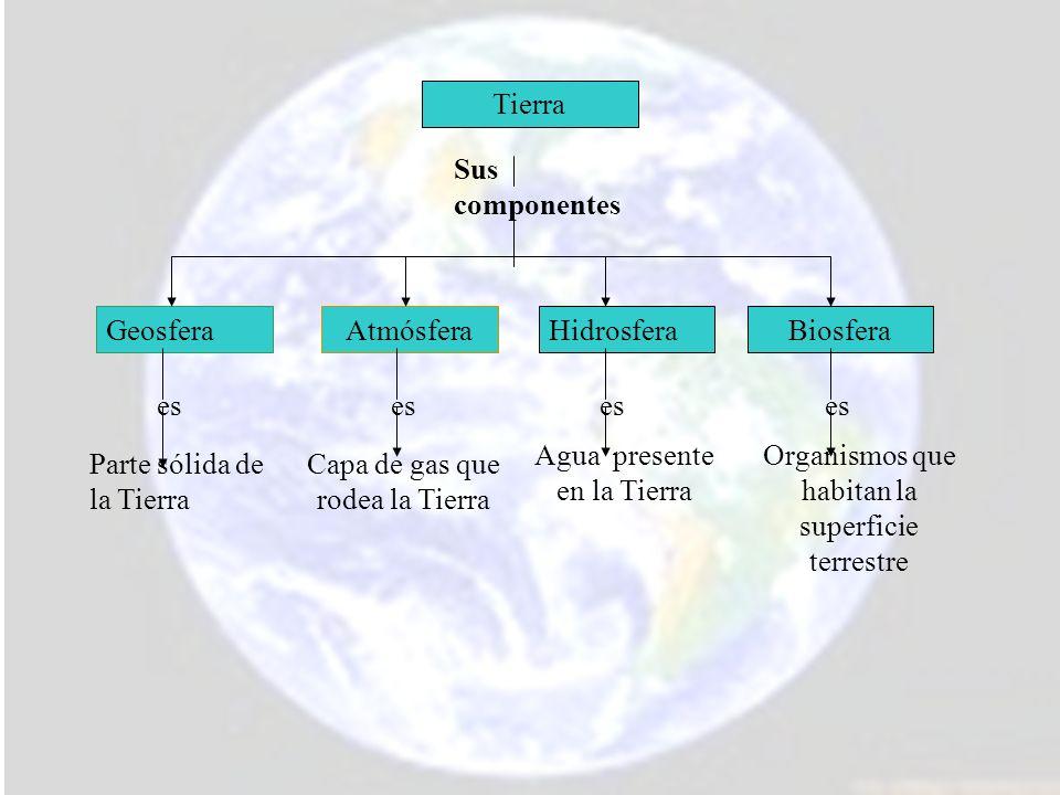 Corteza: capa externa y más delgada de la Tierra.
