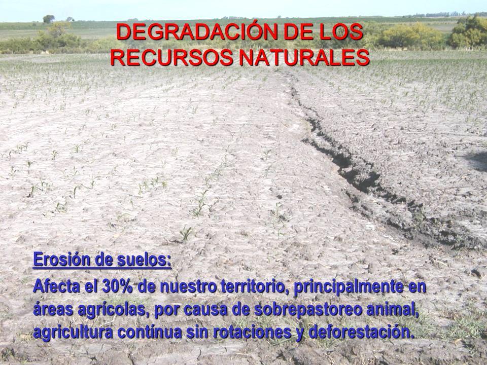 DEGRADACIÓN DE LOS RECURSOS NATURALES Erosión de suelos: Afecta el 30% de nuestro territorio, principalmente en áreas agrícolas, por causa de sobrepastoreo animal, agricultura contínua sin rotaciones y deforestación.