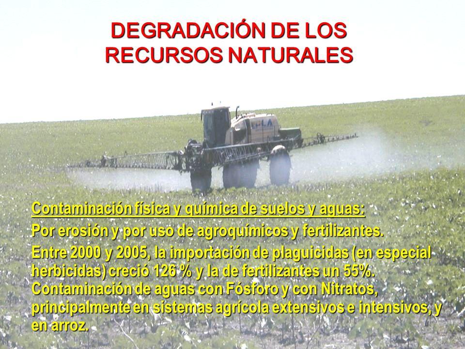 Contaminación física y química de suelos y aguas: Por erosión y por uso de agroquímicos y fertilizantes.