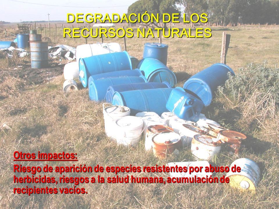 Otros impactos: Riesgo de aparición de especies resistentes por abuso de herbicidas, riesgos a la salud humana, acumulación de recipientes vacíos.