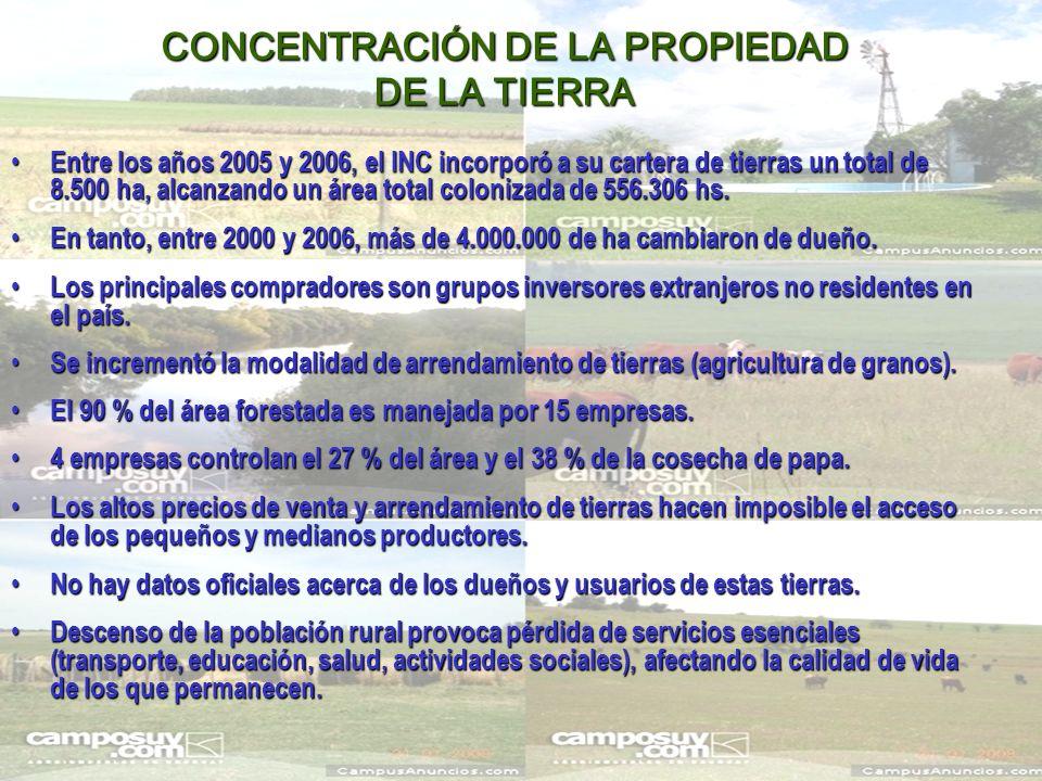 CONCENTRACIÓN DE LA PROPIEDAD DE LA TIERRA Entre los años 2005 y 2006, el INC incorporó a su cartera de tierras un total de 8.500 ha, alcanzando un área total colonizada de 556.306 hs.