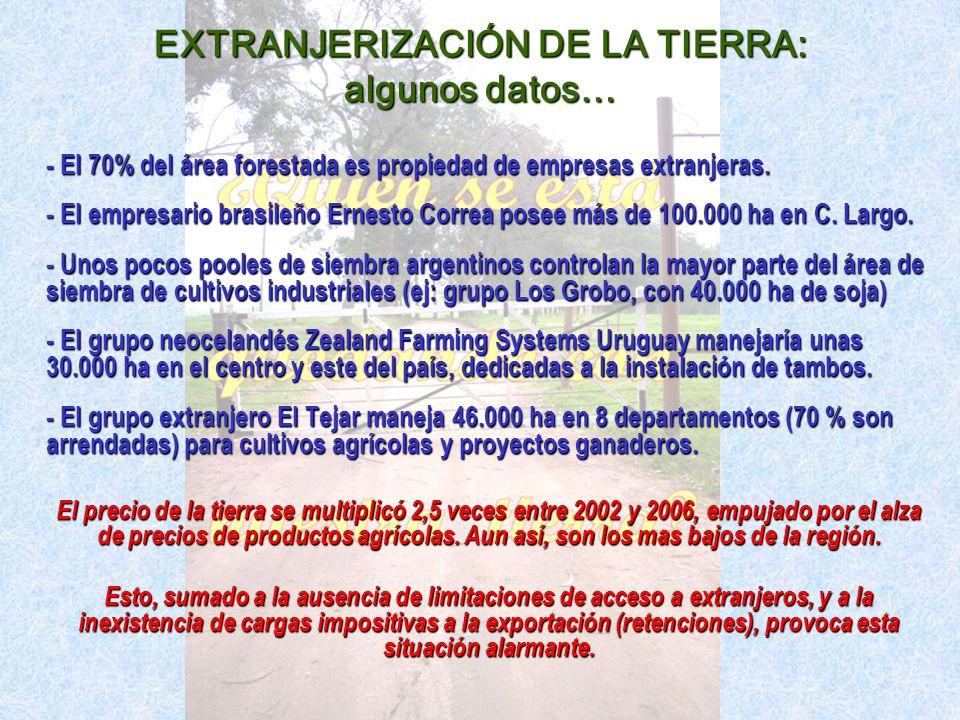 EXTRANJERIZACIÓN DE LA TIERRA: algunos datos… - El 70% del área forestada es propiedad de empresas extranjeras.