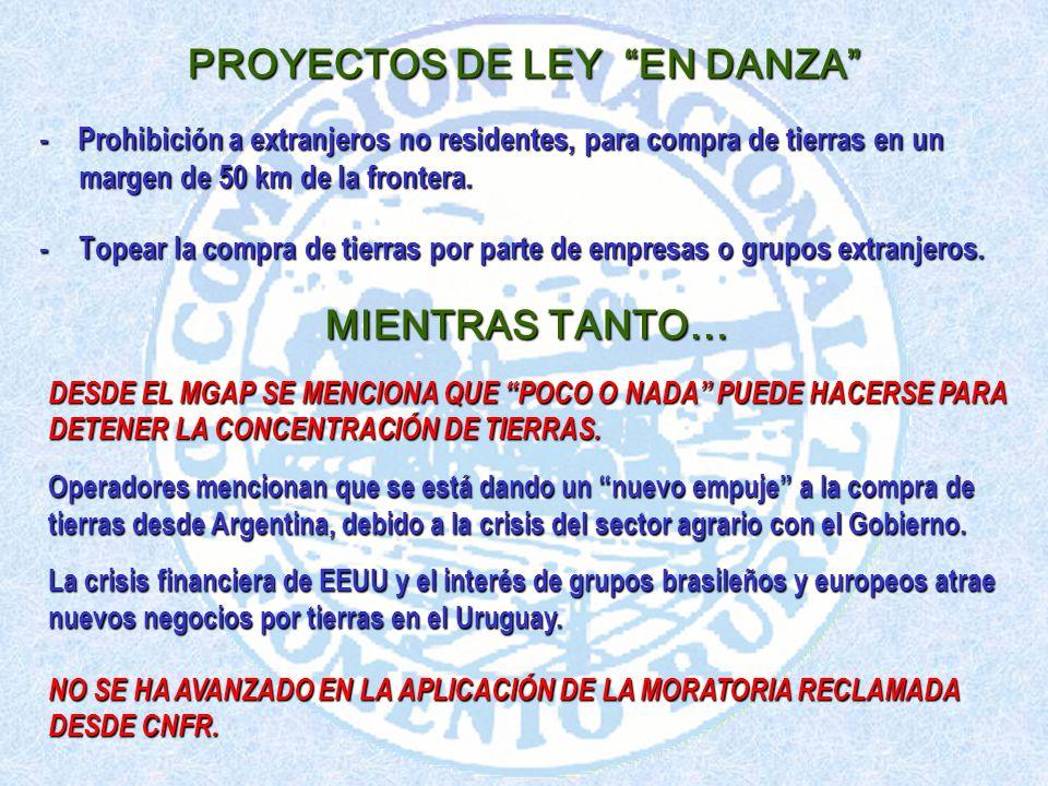 PROYECTOS DE LEY EN DANZA - Prohibición a extranjeros no residentes, para compra de tierras en un margen de 50 km de la frontera.
