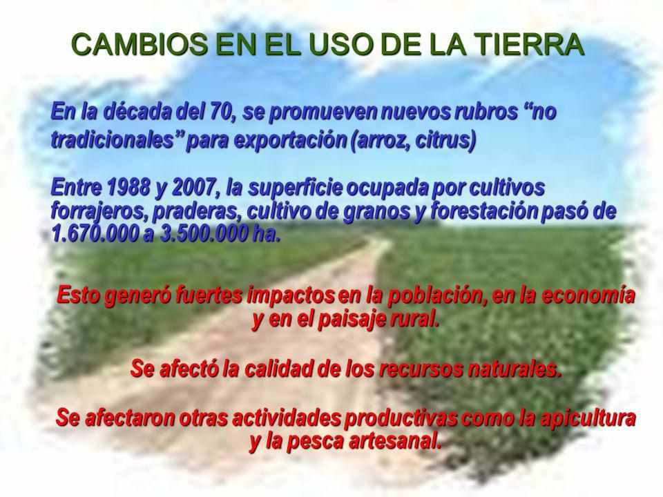 CAMBIOS EN EL USO DE LA TIERRA En la década del 70, se promueven nuevos rubros no tradicionales para exportación (arroz, citrus) Entre 1988 y 2007, la superficie ocupada por cultivos forrajeros, praderas, cultivo de granos y forestación pasó de 1.670.000 a 3.500.000 ha.