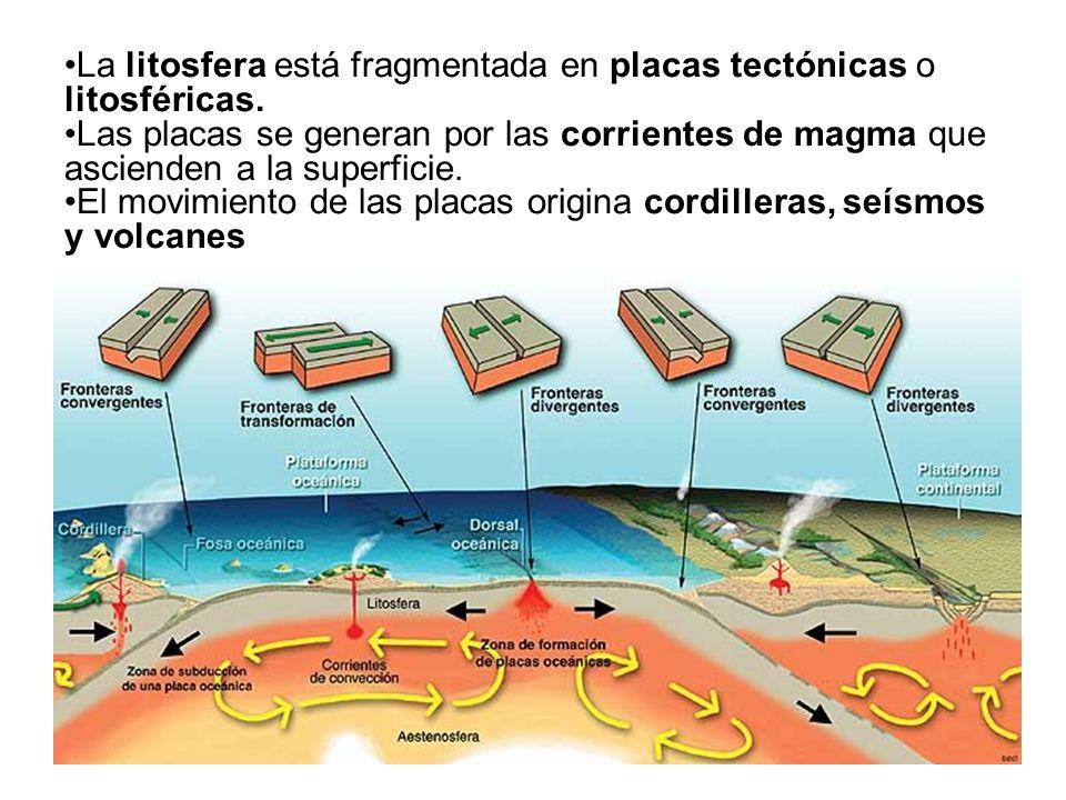 33 La litosfera está fragmentada en placas tectónicas o litosféricas. Las placas se generan por las corrientes de magma que ascienden a la superficie.