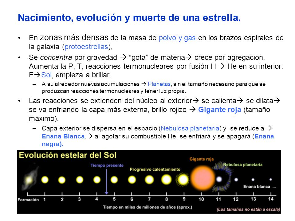 Nacimiento, evolución y muerte de una estrella. En zonas más densas de la masa de polvo y gas en los brazos espirales de la galaxia (protoestrellas),