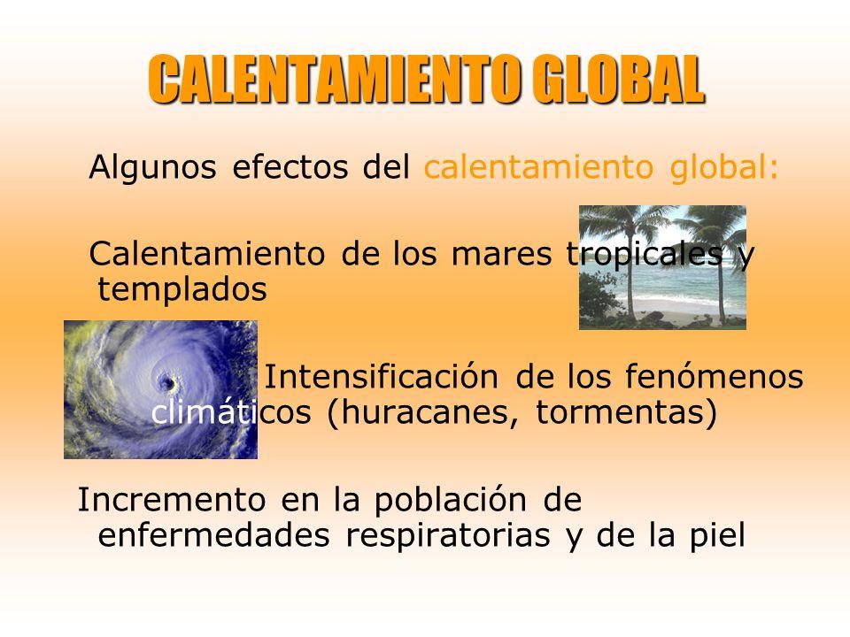 CALENTAMIENTO GLOBAL Algunos efectos del calentamiento global: Calentamiento de los mares tropicales y templados Intensificación de los fenómenos clim