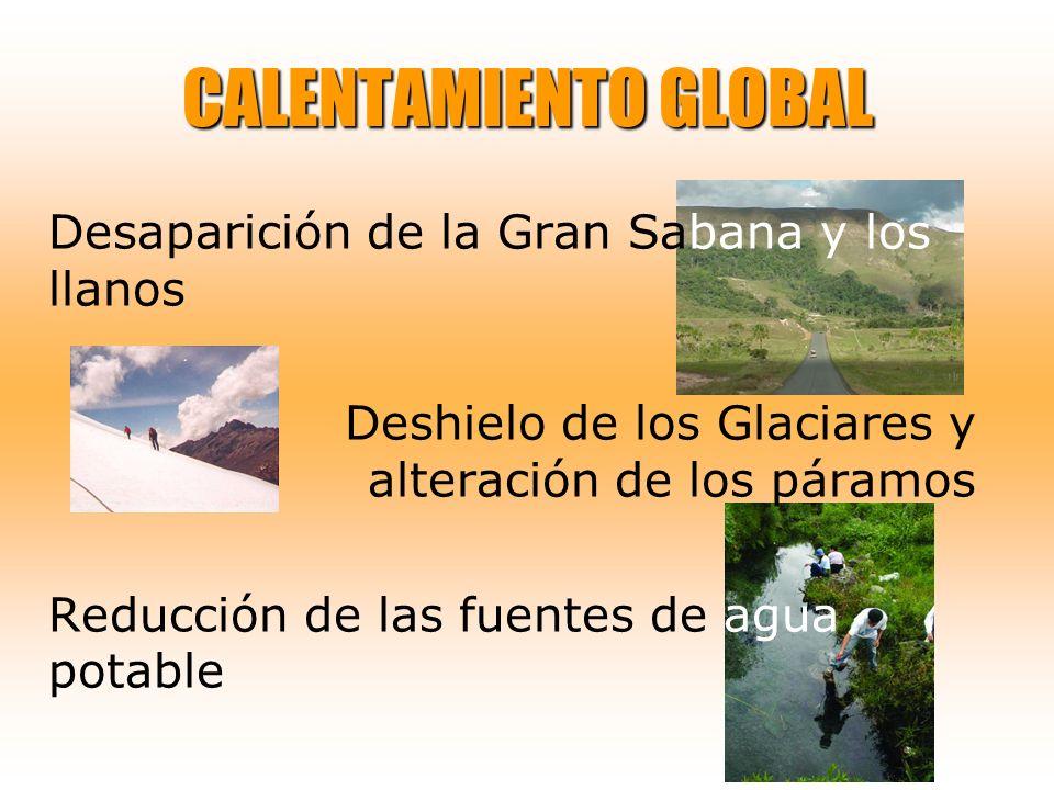 CALENTAMIENTO GLOBAL Desaparición de la Gran Sabana y los llanos Deshielo de los Glaciares y alteración de los páramos Reducción de las fuentes de agu