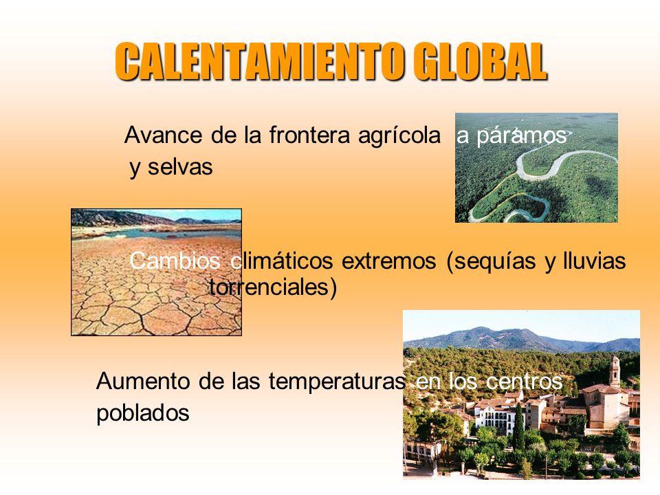 CALENTAMIENTO GLOBAL Avance de la frontera agrícola a páramos y selvas Cambios climáticos extremos (sequías y lluvias torrenciales) Aumento de las tem
