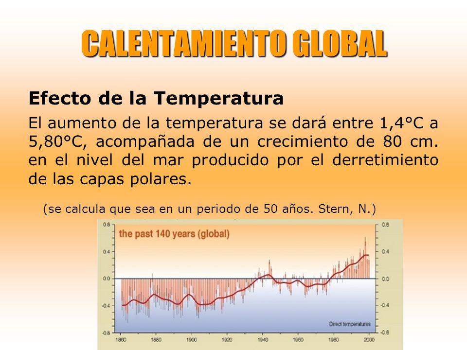 CALENTAMIENTO GLOBAL Efecto de la Temperatura El aumento de la temperatura se dará entre 1,4°C a 5,80°C, acompañada de un crecimiento de 80 cm. en el
