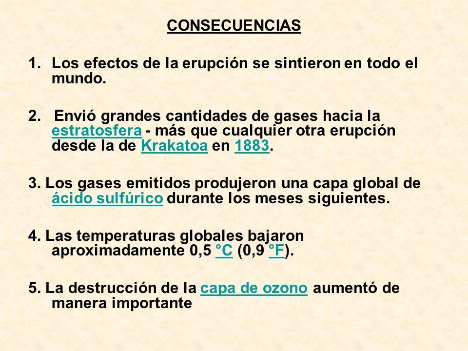 CONSECUENCIAS 1.Los efectos de la erupción se sintieron en todo el mundo. 2. Envió grandes cantidades de gases hacia la estratosfera - más que cualqui
