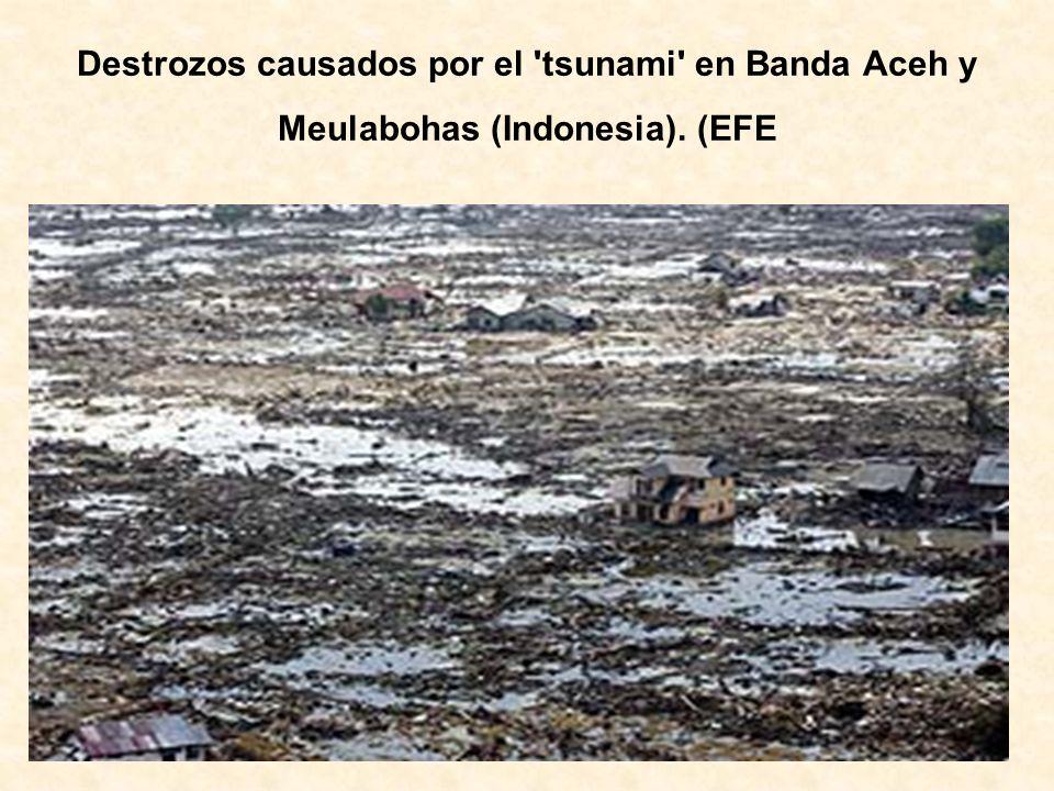Destrozos causados por el 'tsunami' en Banda Aceh y Meulabohas (Indonesia). (EFE