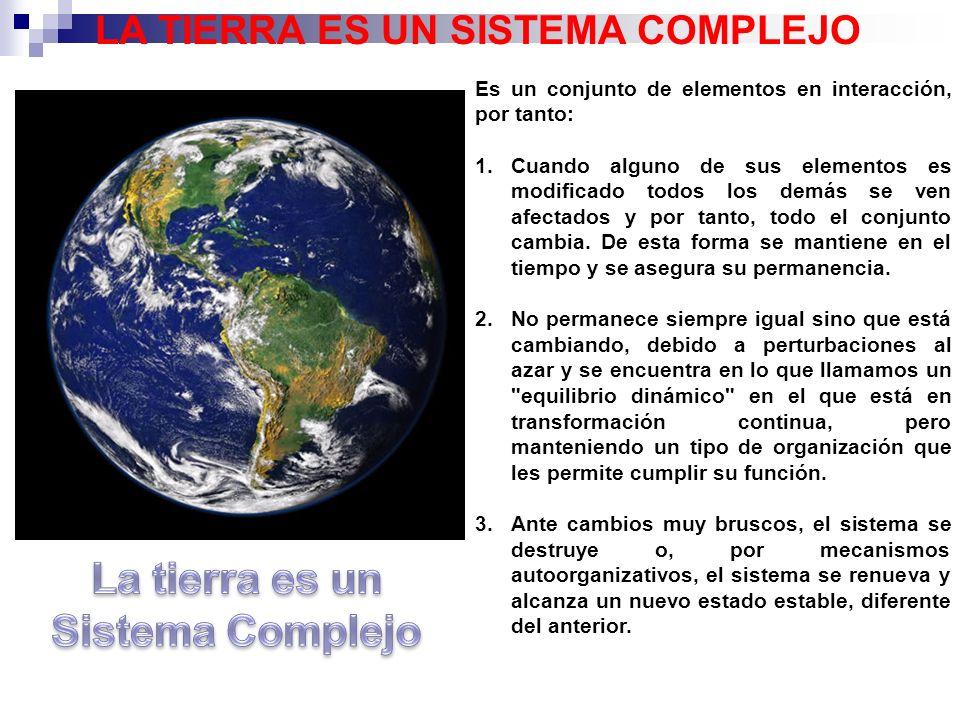 19 PREDICCIONES DEL IPCC-2007 Los diferentes escenarios previstos por el IPCC suponen, en cualquier caso, subidas de la temperatura media global y del nivel del mar.