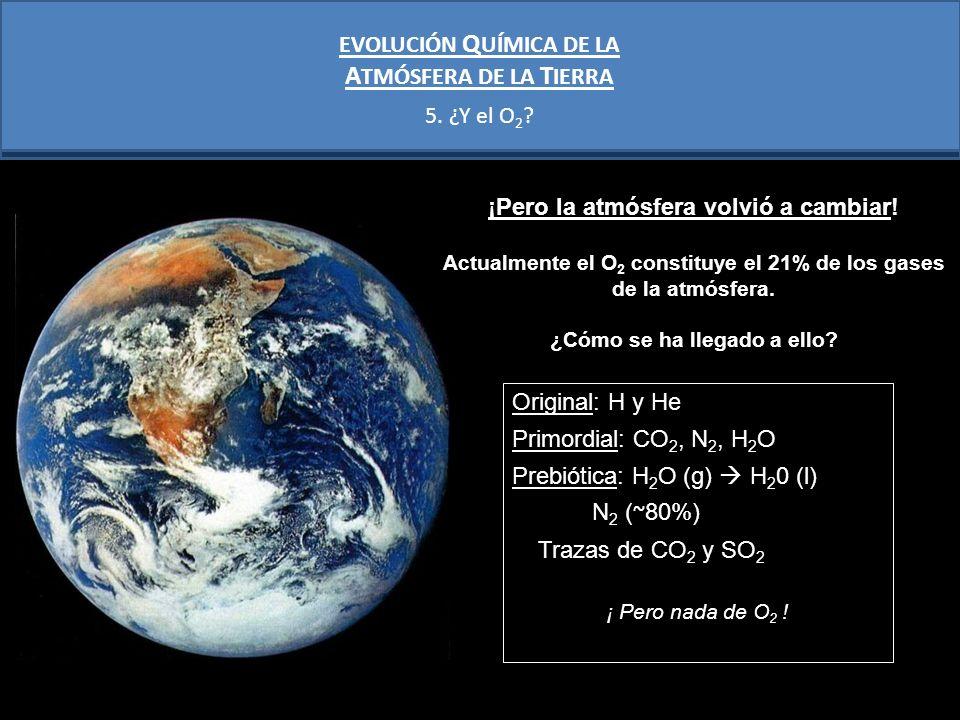 La producción de O 2 en la atmósfera empieza a aumentar con el desarrollo de los primeros organismos fotosintéticos (3000Ma?): CO 2 + H 2 O + luz = CH 2 O + O 2 Pero en los primeros cientos de Ma de la aparición de las cianobacterias, el O 2 atmosférico no aumentó: GRAN OXIDACIÓN ( ~ 2400 Ma?) - Reacciones bioquímicas - Oxidación de los minerales 4Fe 2+ + O 2 + 4H + 4Fe 3+ + 2H 2 O CIANOBATERIAS EVOLUCIÓN Q UÍMICA DE LA A TMÓSFERA DE LA T IERRA 5.