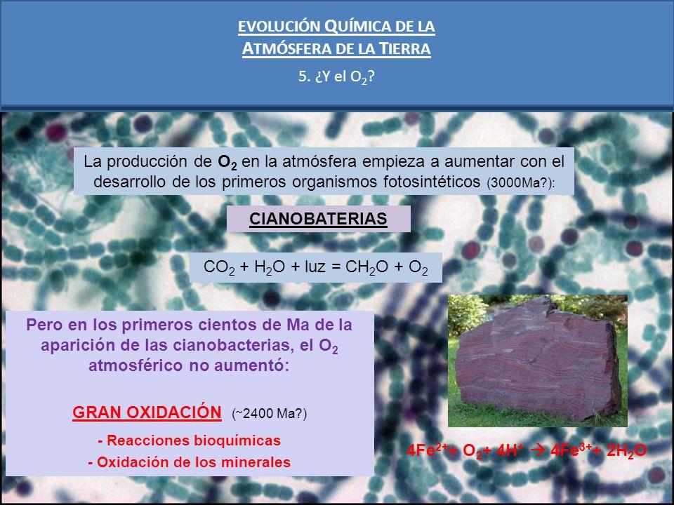 EVOLUCIÓN Q UÍMICA DE LA A TMÓSFERA DE LA T IERRA 6.