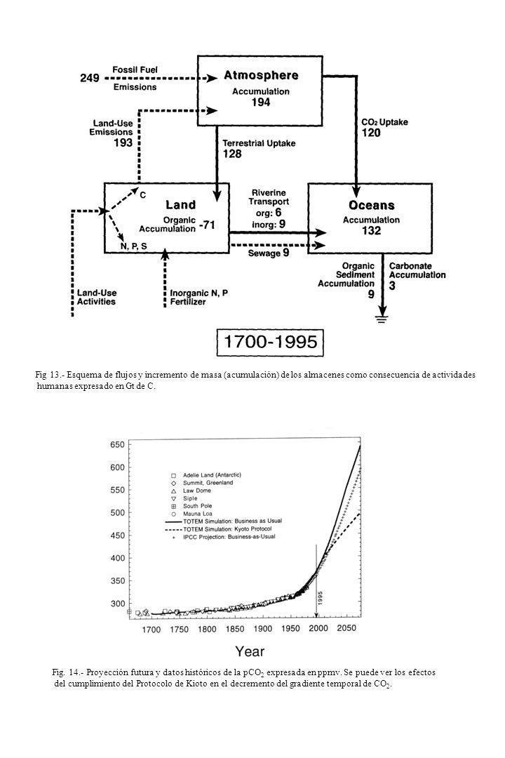 Fig 13.- Esquema de flujos y incremento de masa (acumulación) de los almacenes como consecuencia de actividades humanas expresado en Gt de C. Fig. 14.