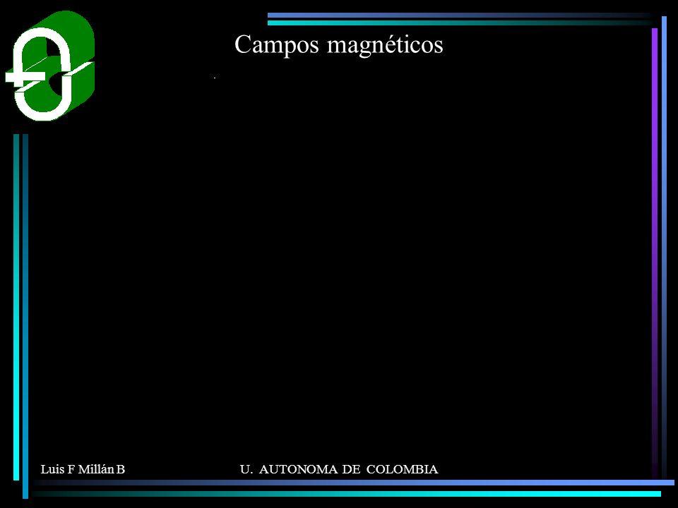 Luis F Millán BU. AUTONOMA DE COLOMBIA Campos magnéticos