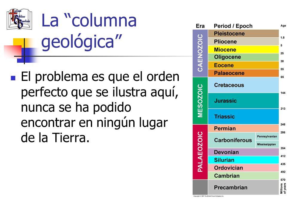 La columna geológica El problema es que el orden perfecto que se ilustra aquí, nunca se ha podido encontrar en ningún lugar de la Tierra.