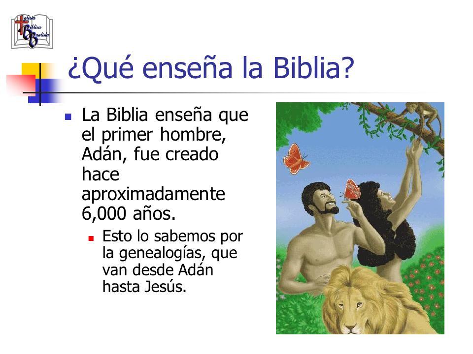 ¿Qué enseña la Biblia? La Biblia enseña que el primer hombre, Adán, fue creado hace aproximadamente 6,000 años. Esto lo sabemos por la genealogías, qu