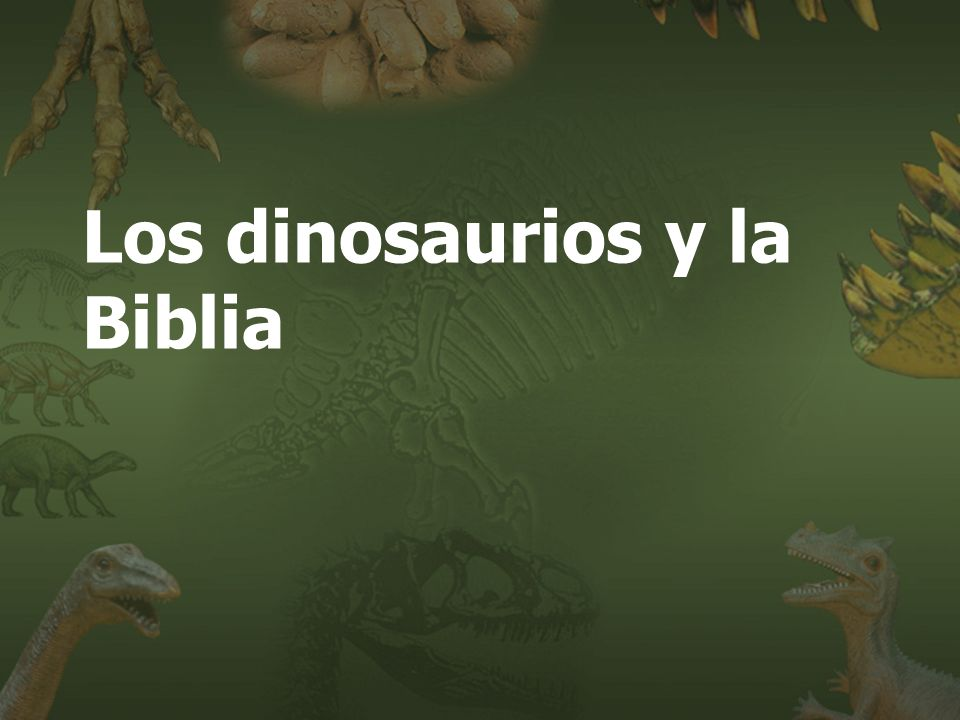 (787) 890-0118 www.iglesiabiblicabautista.org Iglesia Bíblica Bautista de Aguadilla Los dinosaurios y la Biblia