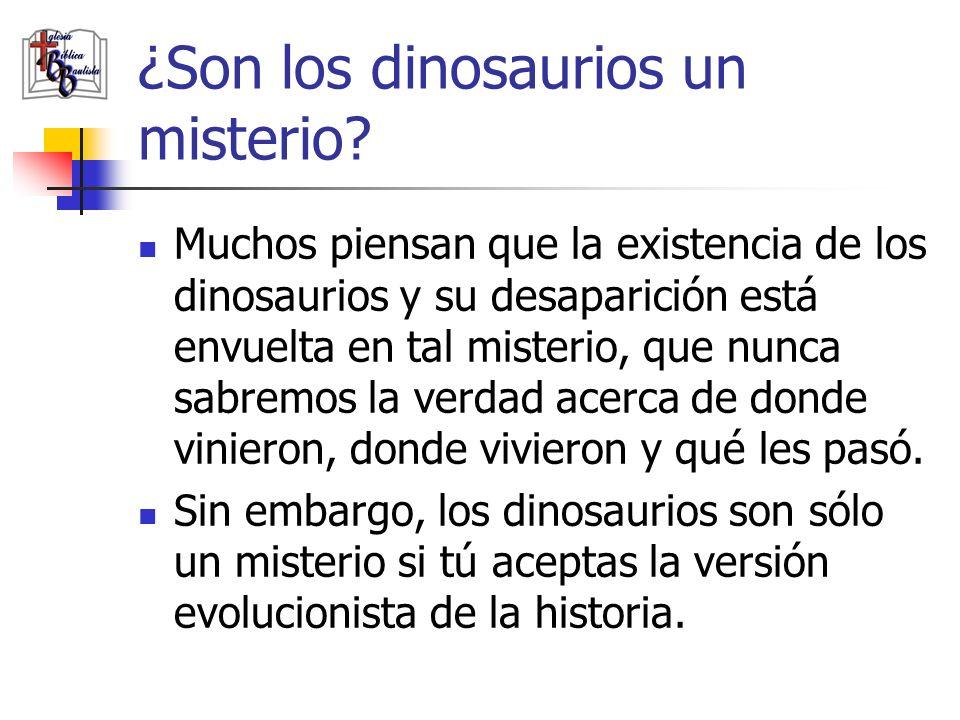 ¿Son los dinosaurios un misterio? Muchos piensan que la existencia de los dinosaurios y su desaparición está envuelta en tal misterio, que nunca sabre