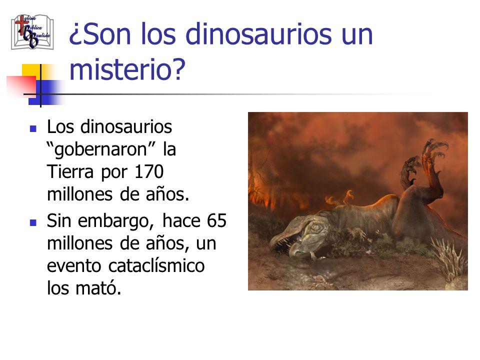 ¿Son los dinosaurios un misterio? Los dinosaurios gobernaron la Tierra por 170 millones de años. Sin embargo, hace 65 millones de años, un evento cata