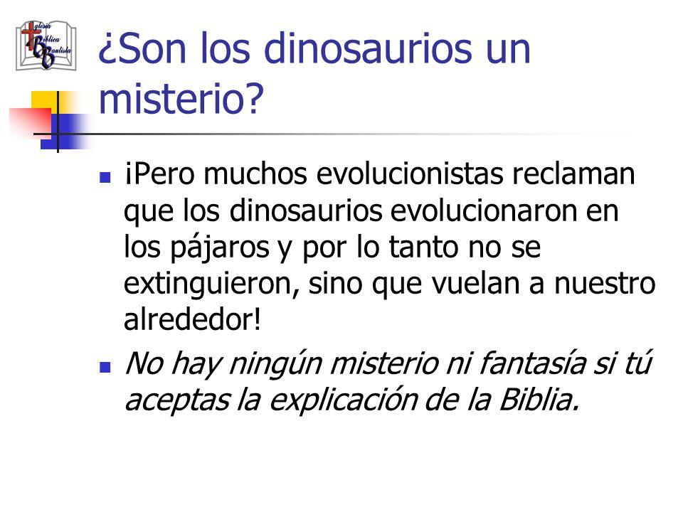 ¿Son los dinosaurios un misterio? ¡Pero muchos evolucionistas reclaman que los dinosaurios evolucionaron en los pájaros y por lo tanto no se extinguie