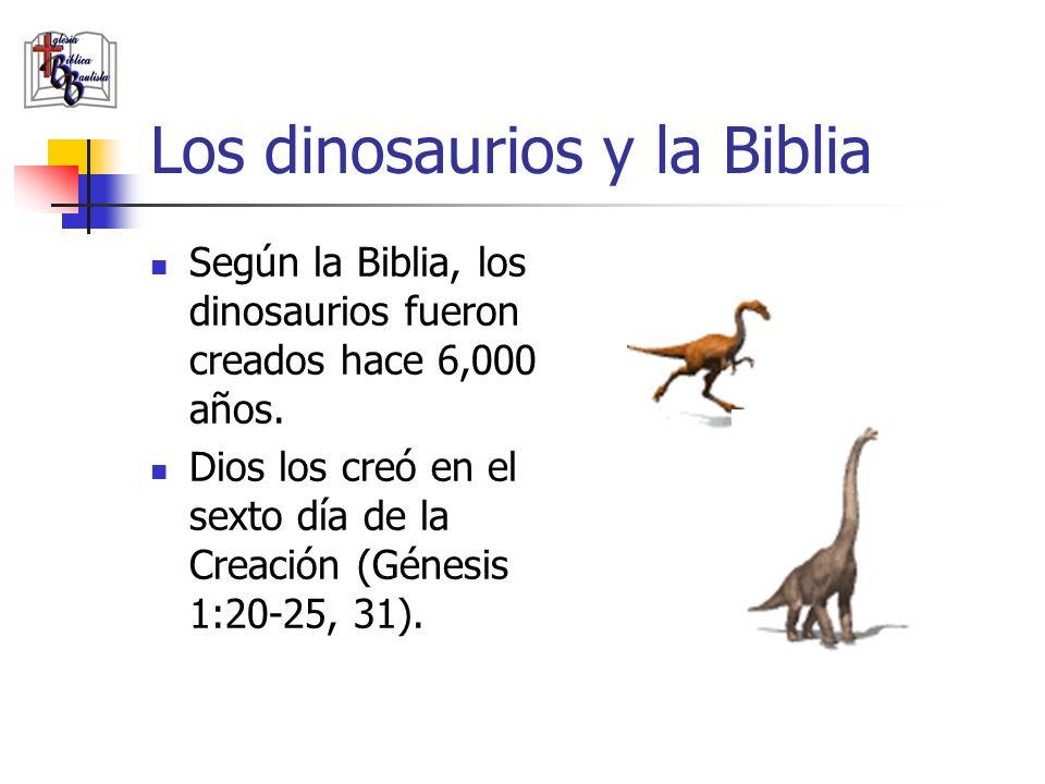 Los dinosaurios y la Biblia Según la Biblia, los dinosaurios fueron creados hace 6,000 años. Dios los creó en el sexto día de la Creación (Génesis 1:2