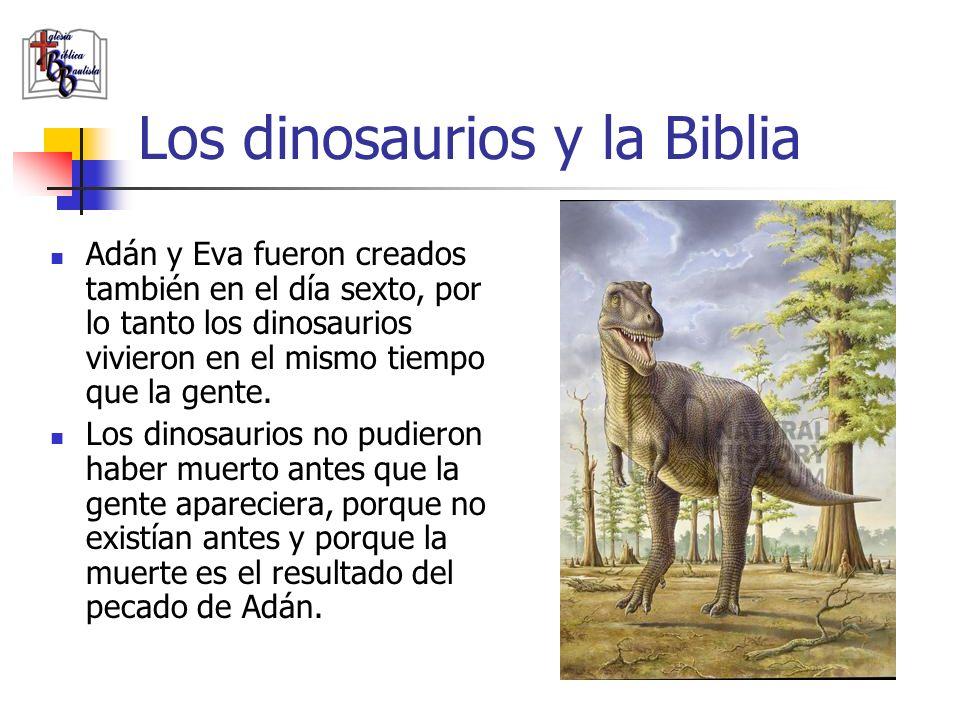 Los dinosaurios y la Biblia Adán y Eva fueron creados también en el día sexto, por lo tanto los dinosaurios vivieron en el mismo tiempo que la gente.