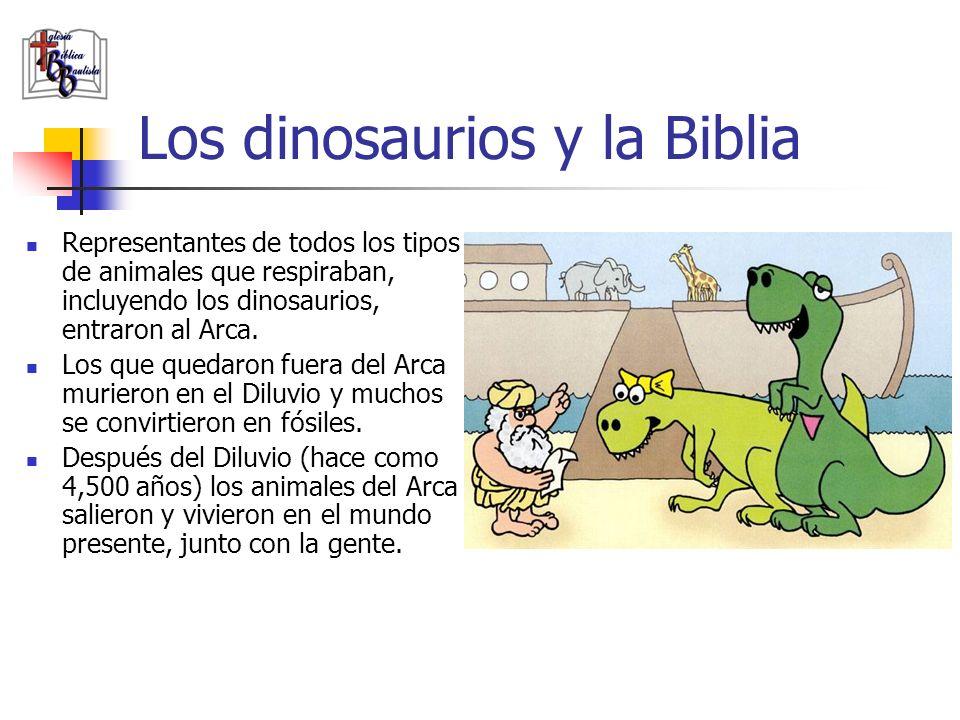 Los dinosaurios y la Biblia Representantes de todos los tipos de animales que respiraban, incluyendo los dinosaurios, entraron al Arca. Los que quedar